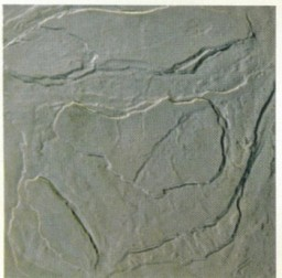 Textured concrete paver molds yorkstone paver molds for Garden pond moulds
