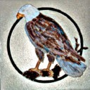 Eagle Perched  - Concrete Stepping Stone Mold