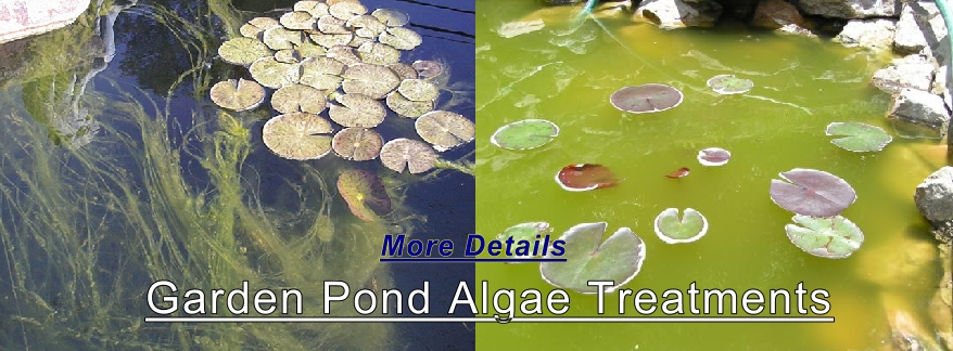 Garden ponds pond supplies water gardens concrete molds for Garden pond do you need a pump