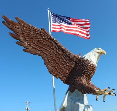 eagle-with-flags